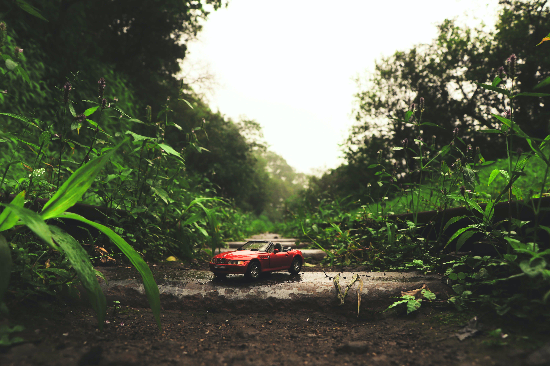 Kostenloses Stock Foto zu auto, auto wallpaper, autos, bmw z4
