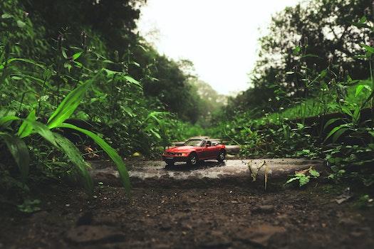 Free stock photo of car, grass, soil, miniature