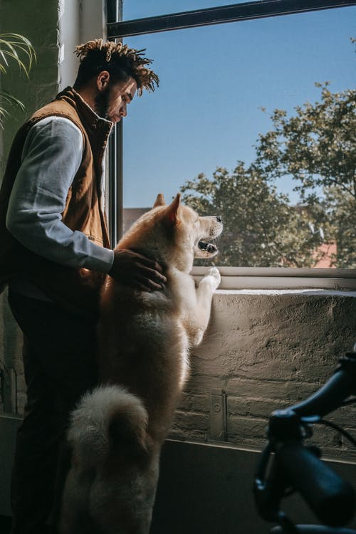 Young ethnic guy with cute dog standing on hind legs looking out window