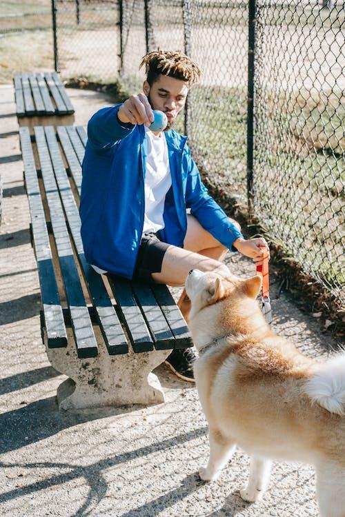 Ethnic man with ball training purebred dog on urban bench