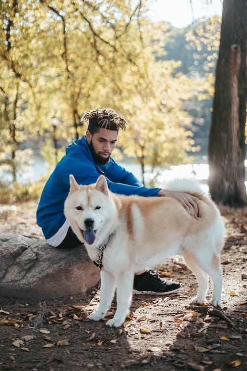 Ethnic hipster man stroking purebred dog in park