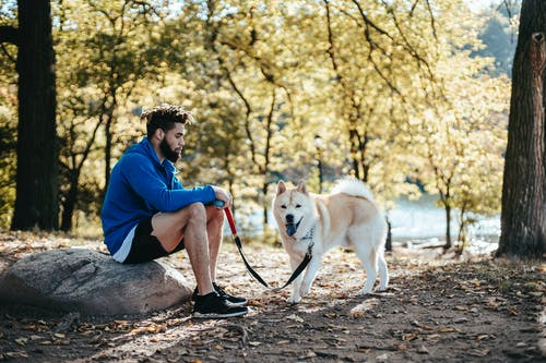 Ethnic bearded man with purebred dog in park