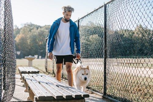 Ethnic hipster man walking purebred dog between grid fences