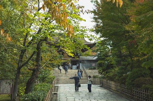 Tradycyjna Kapliczka Za Bujnymi Drzewami W Parku