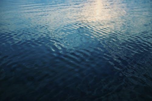 Foto d'estoc gratuïta de aigua, aigua blava, calma, ondulacions