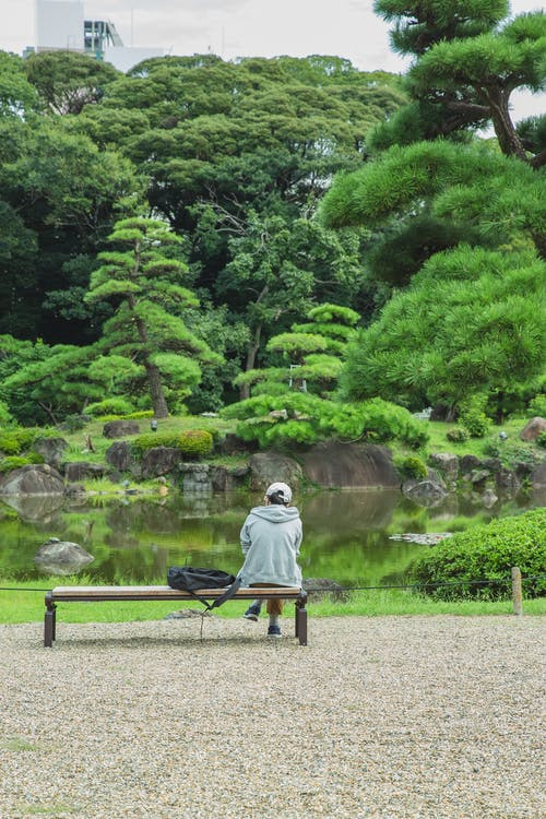 Faceless traveler contemplating pond with trees in botanical garden