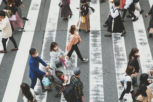 Бесплатное стоковое фото с Взрослый, военный, город, группа
