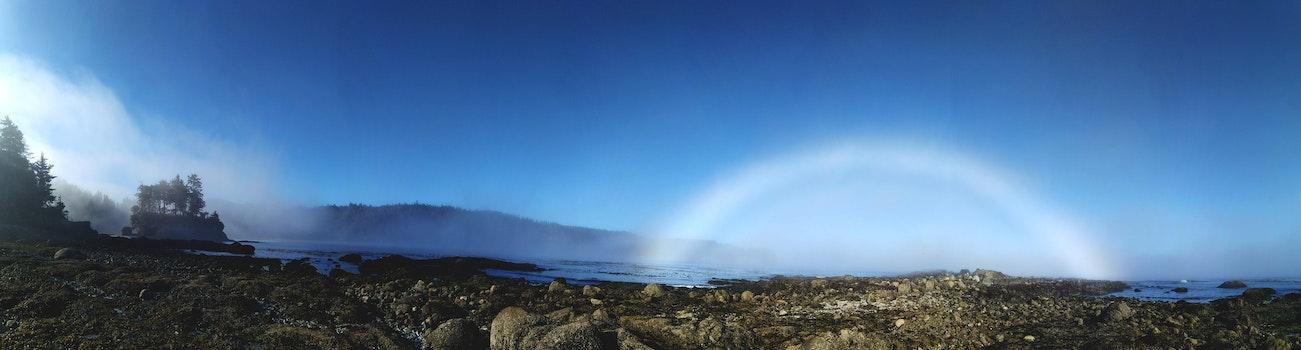 Free stock photo of beach, ocean, forest, fog