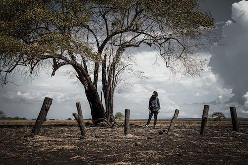 Man in Black Jacket Standing Near Brown Bare Tree