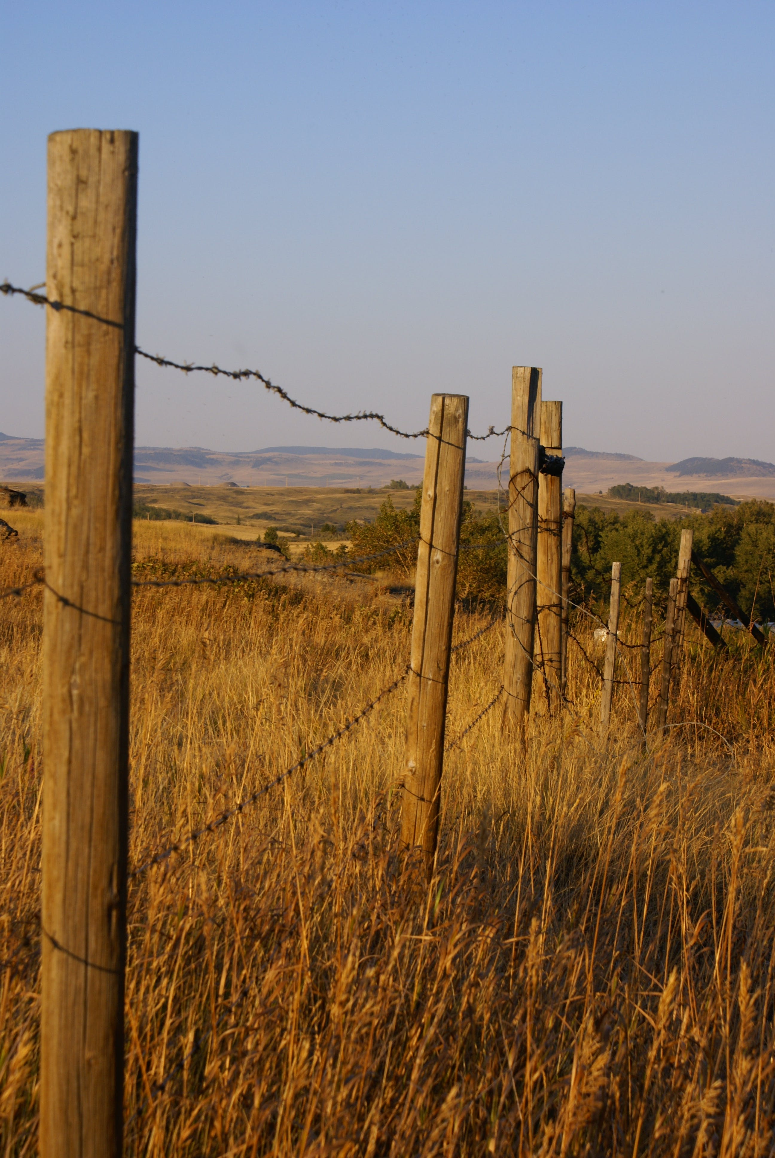 Free stock photo of barbed wire, fence, Fenceline, foothills