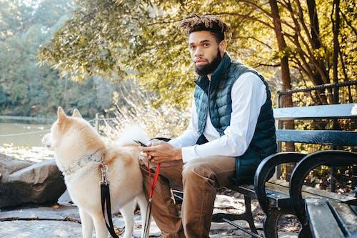 Ilmainen kuvapankkikuva tunnisteilla afroamerikkalainen mies, älypuhelin, eläin, elämäntapa