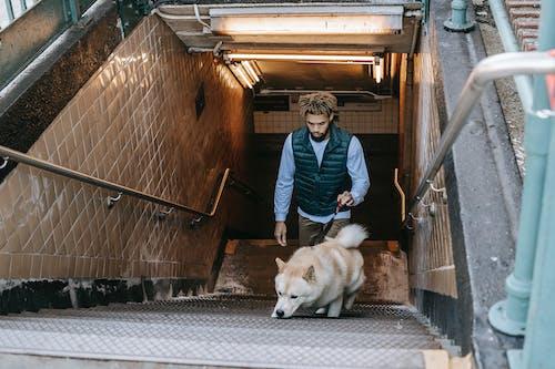 Black man with dog walking upstairs in subway