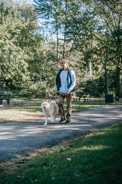 Black man walking with dog on pathway