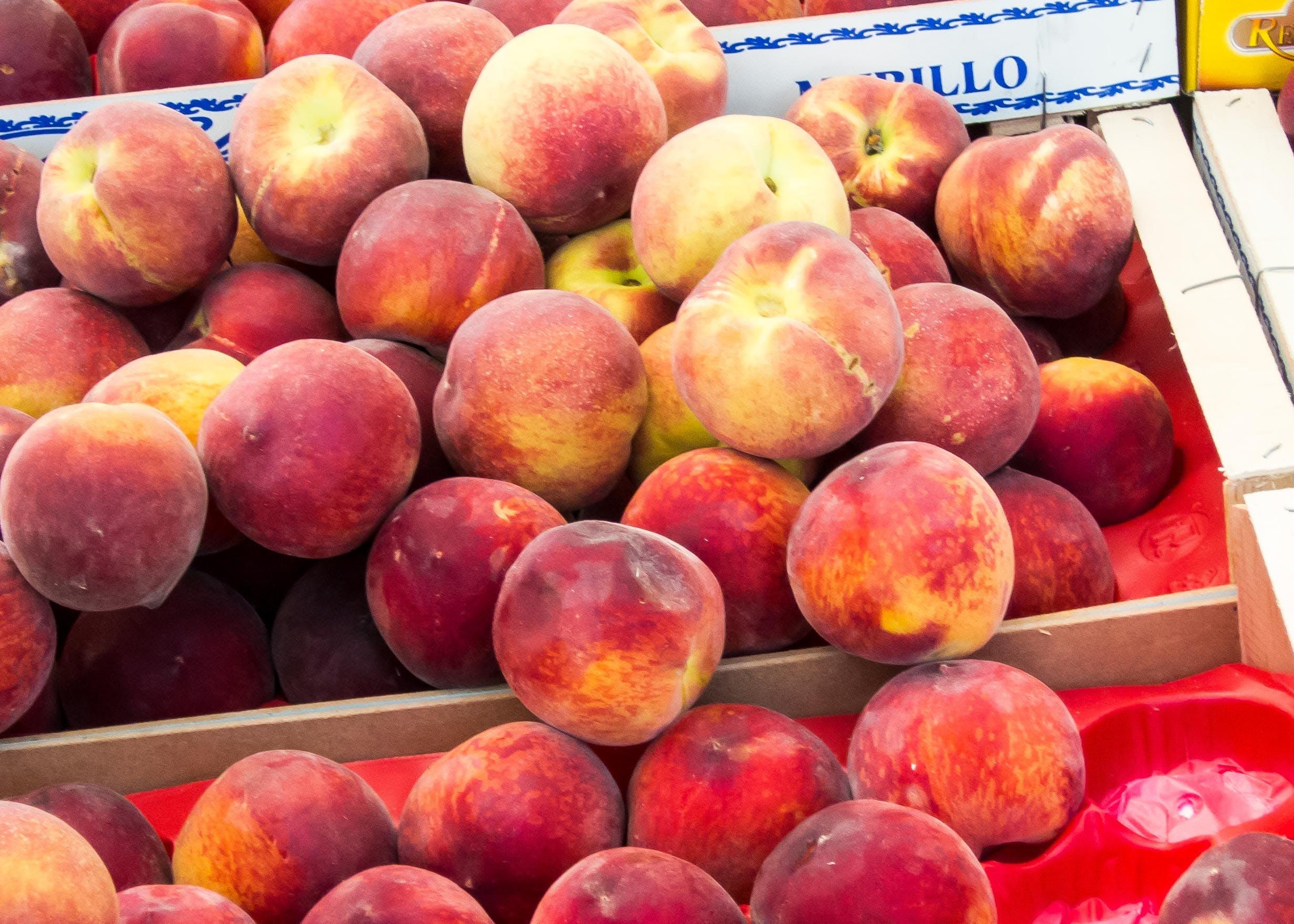 Free stock photo of peaches