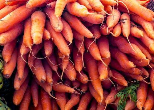 Gratis arkivbilde med gulrøtter