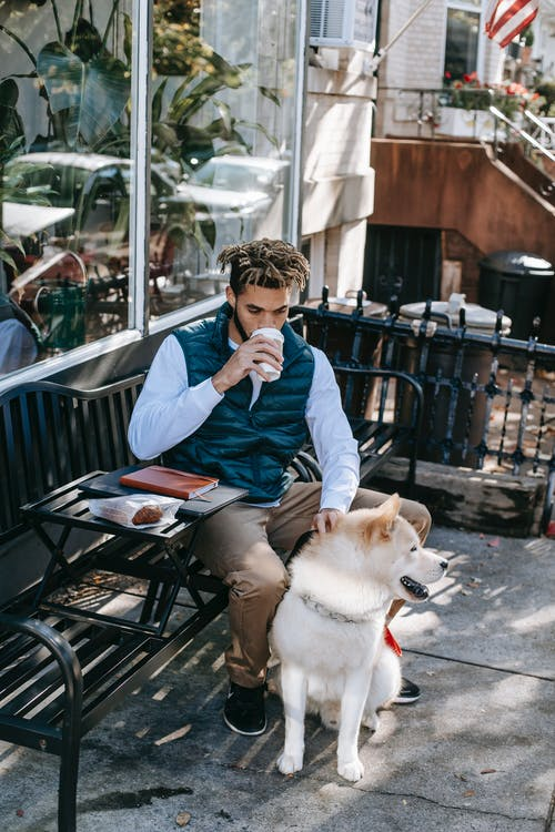 From above of African American male owner sitting on bench with snack and notebook while drinking coffee near Akita Inu dog on street