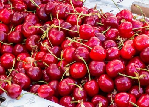 Gratis arkivbilde med kirsebær