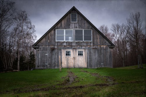 Wooden barn located among bare trees