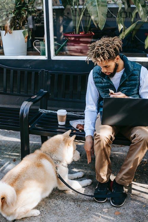Black man with laptop on bench near dog