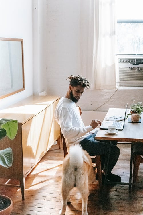 Side view of serious young ethnic man in casual clothes sitting at table with laptop and cup of coffee and looking at cute Akita Inu dog during online work