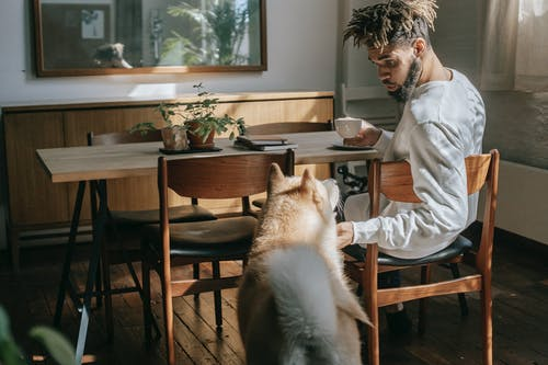 African American man petting cute dog while drinking coffee at home