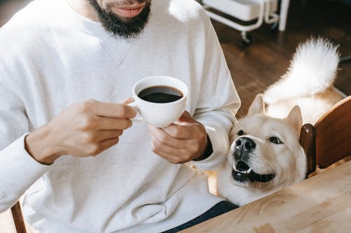 Crop ethnic man drinking coffee at table near curious purebred dog