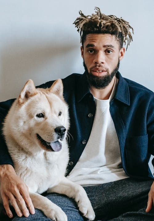 African American bearded male with trendy dreadlocks resting with cute funny Akita Inu dog on white background