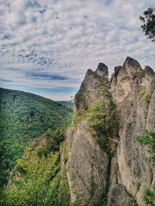 바위, 슬로바키아, 자연의 무료 스톡 사진