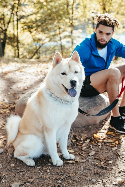 Black man sitting with dog in park