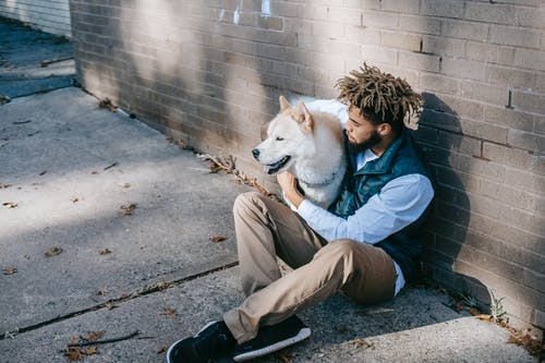 From above of young ethnic male in casual clothes sitting with white fluffy dog