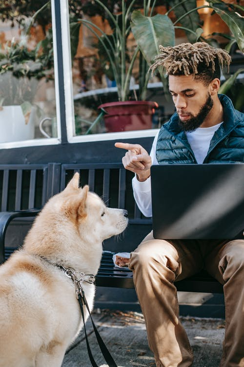Serious man with laptop and dog