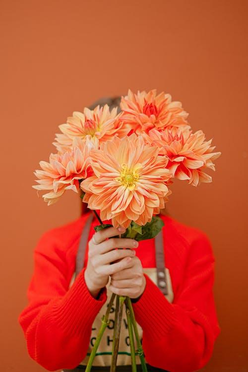 Безкоштовне стокове фото на тему «Анонімний, апельсин, ароматичний»