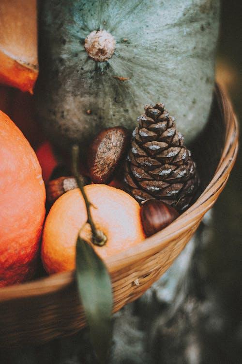 Rustic composition of vegetables in basket