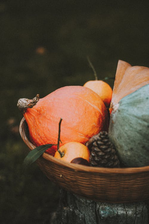 Wicker basket filled with harvested pumpkins and tangerine with pine cone placed in nature