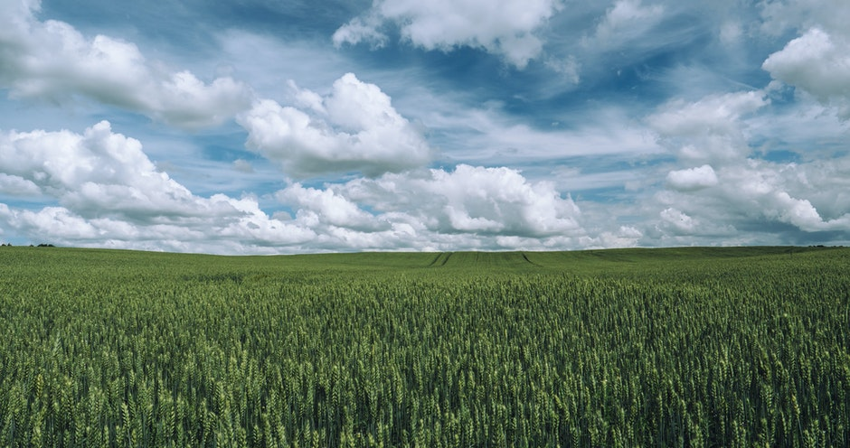 agriculture, clouds, countryside