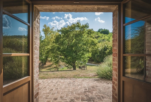 Free stock photo of light, architecture, tree, door
