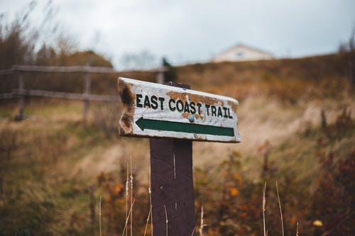 Old wooden direction post with East Coast Trail title on grass hill in daytime