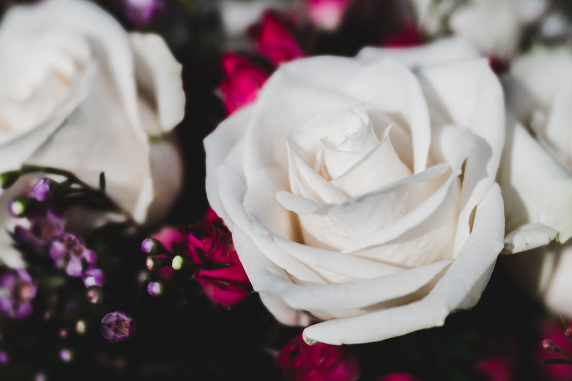 Bunch of tender white roses arranged with red flowers