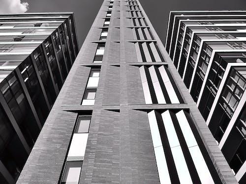 คลังภาพถ่ายฟรี ของ กระจก, ขาวดำ, ตึก, ตึกระฟ้า
