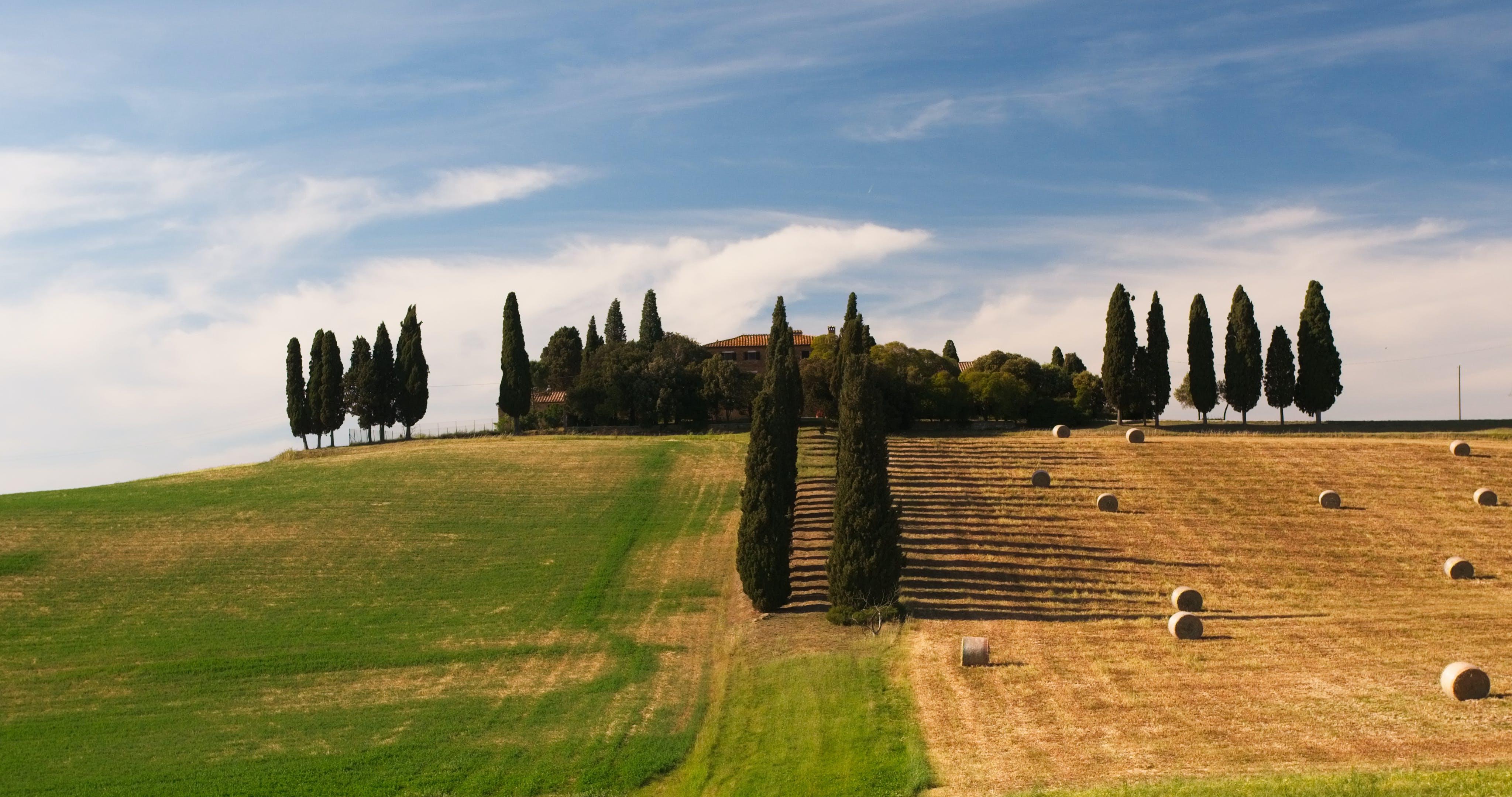 Free stock photo of famous landmark