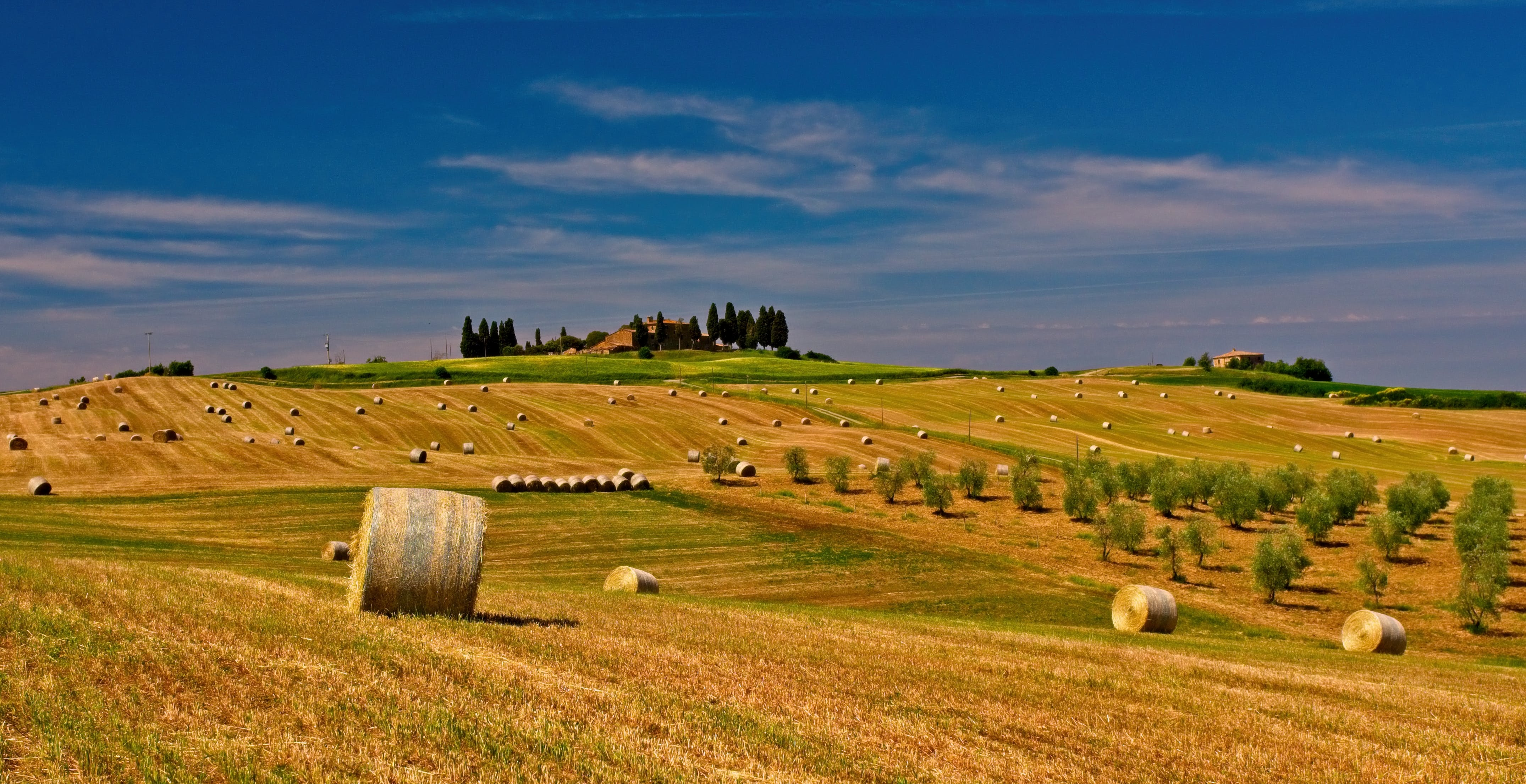 agriculture, bale, countryside