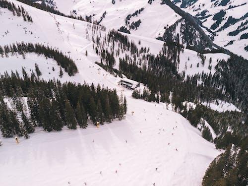 Безкоштовне стокове фото на тему «аерознімок, Альпи, зимовий пейзаж»