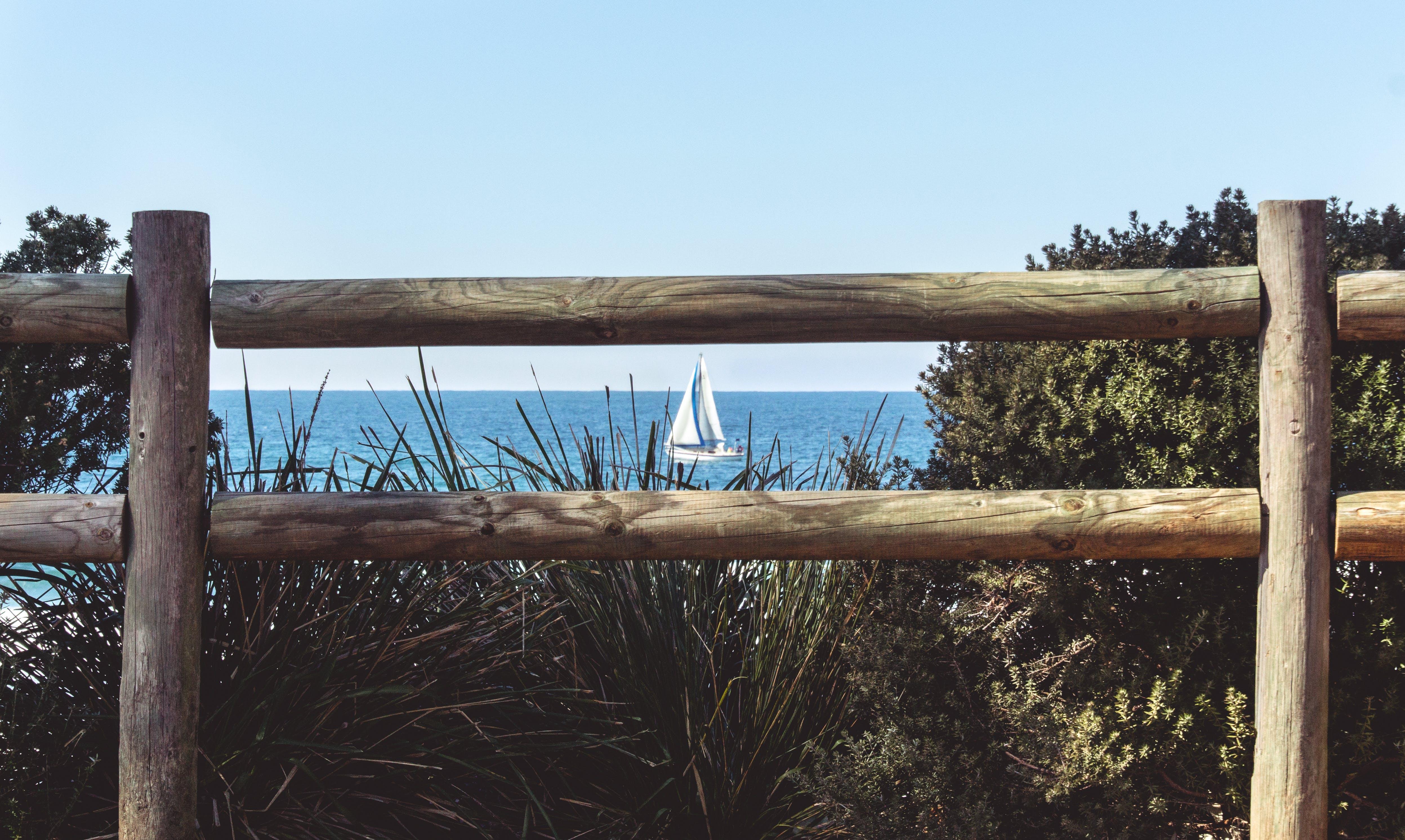 Free stock photo of sea, water, ocean, boat