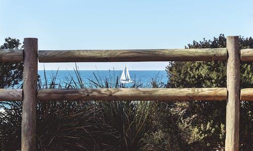 Fotos de stock gratuitas de agua, barca, cerca, césped