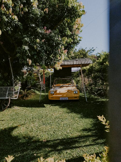 Retro car on green yard