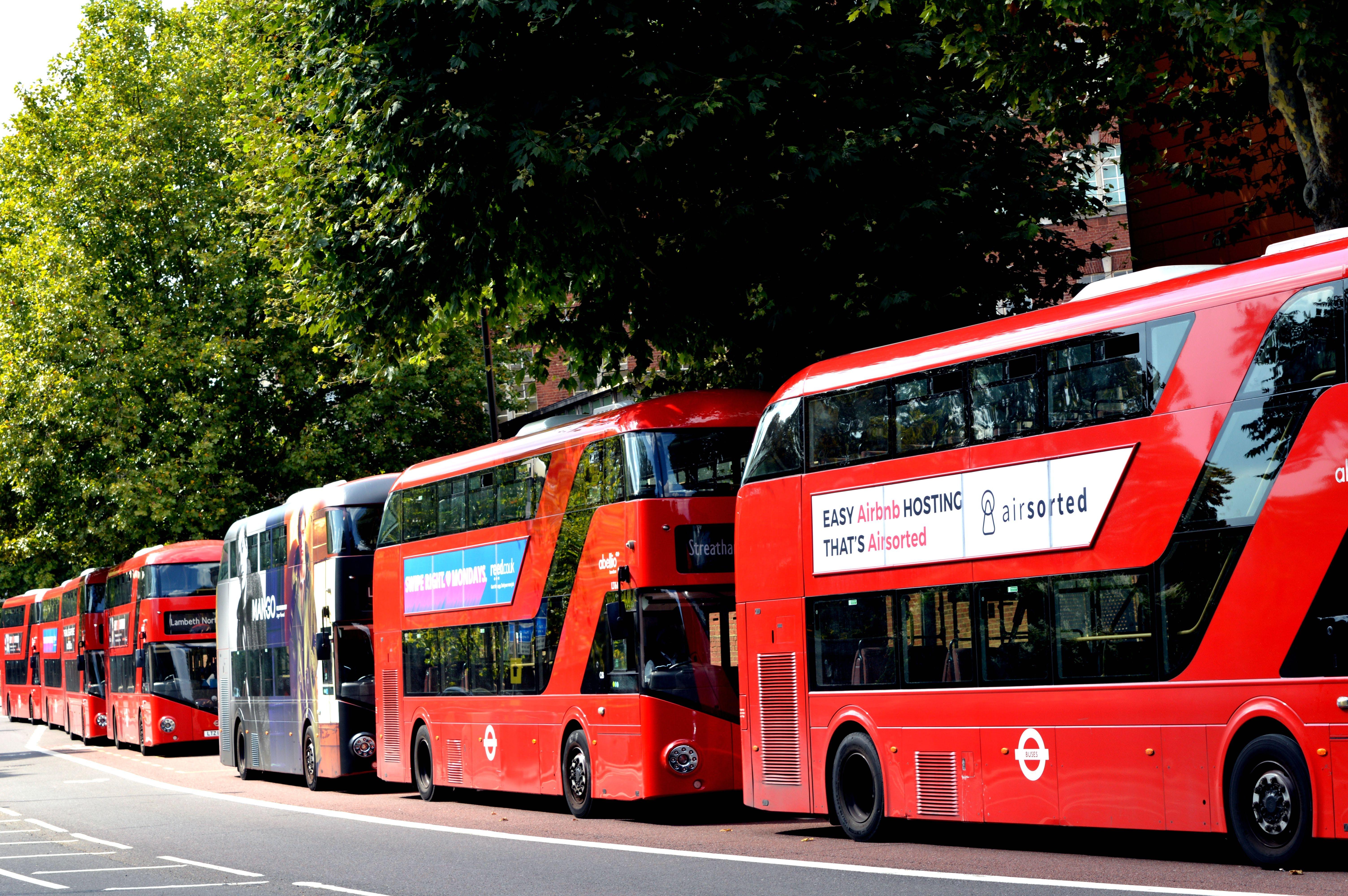 asphalt, buses, city