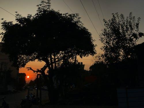 Kostnadsfri bild av contra una llum de sol, kvällshimmel, mörk, mörk bakgrund