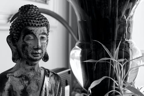 Free stock photo of buda, budah, budismo