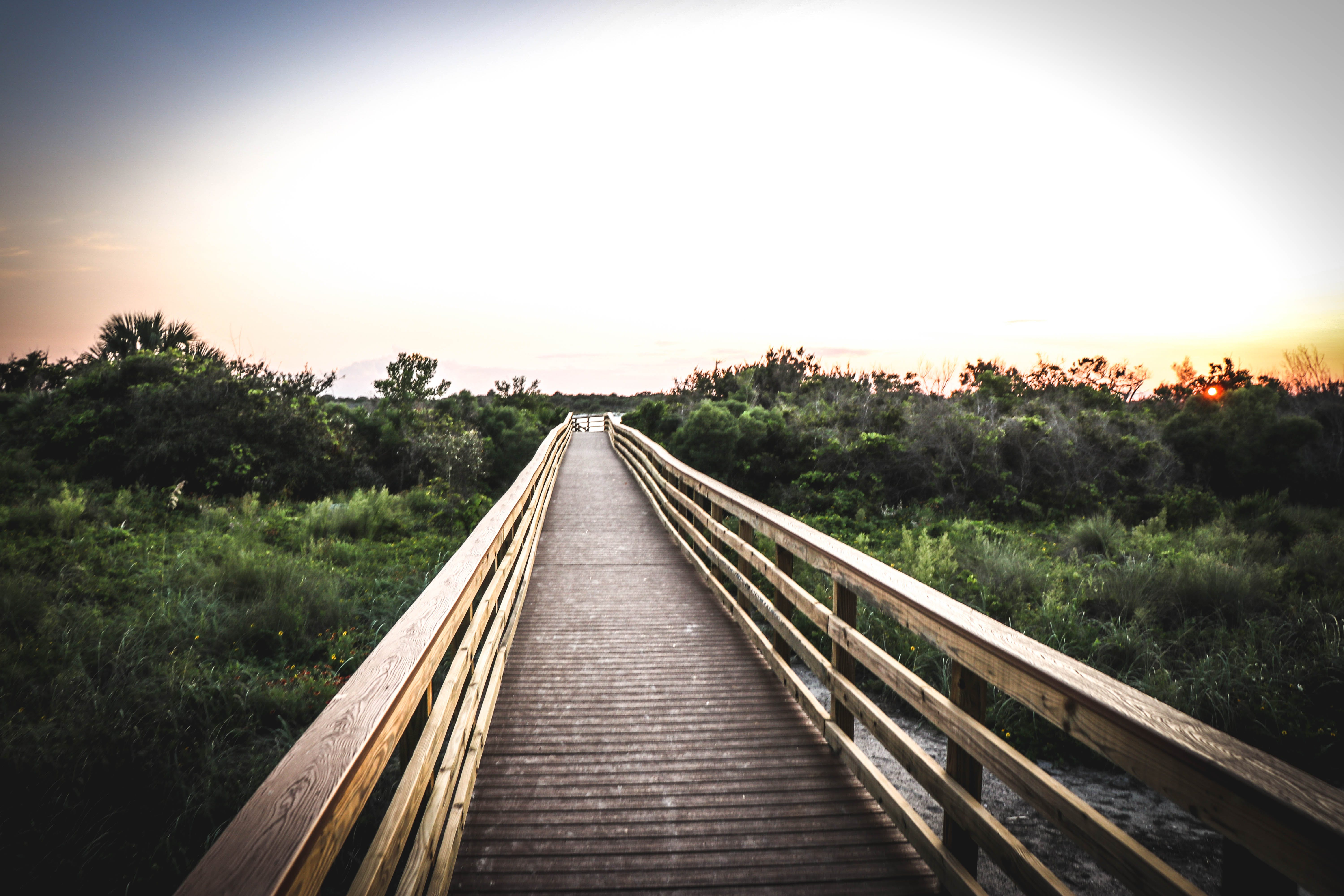 Wide Angle Photo of Brown Wooden Bridge