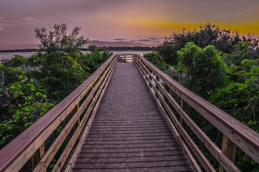 Free stock photo of sunset, beach, water, st augustine
